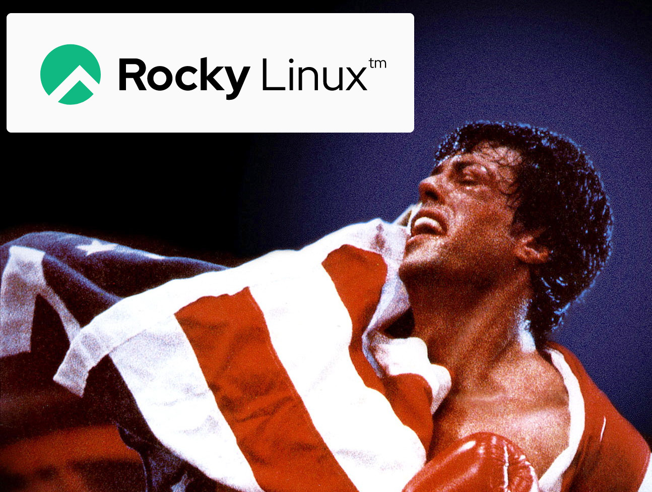 Successor to CentOS: GNU Rocky Linux 8.4 – community driven enterprise Open Source OS – for x86 and ARM – a test drive (as VirtualBox VM) with screenshots